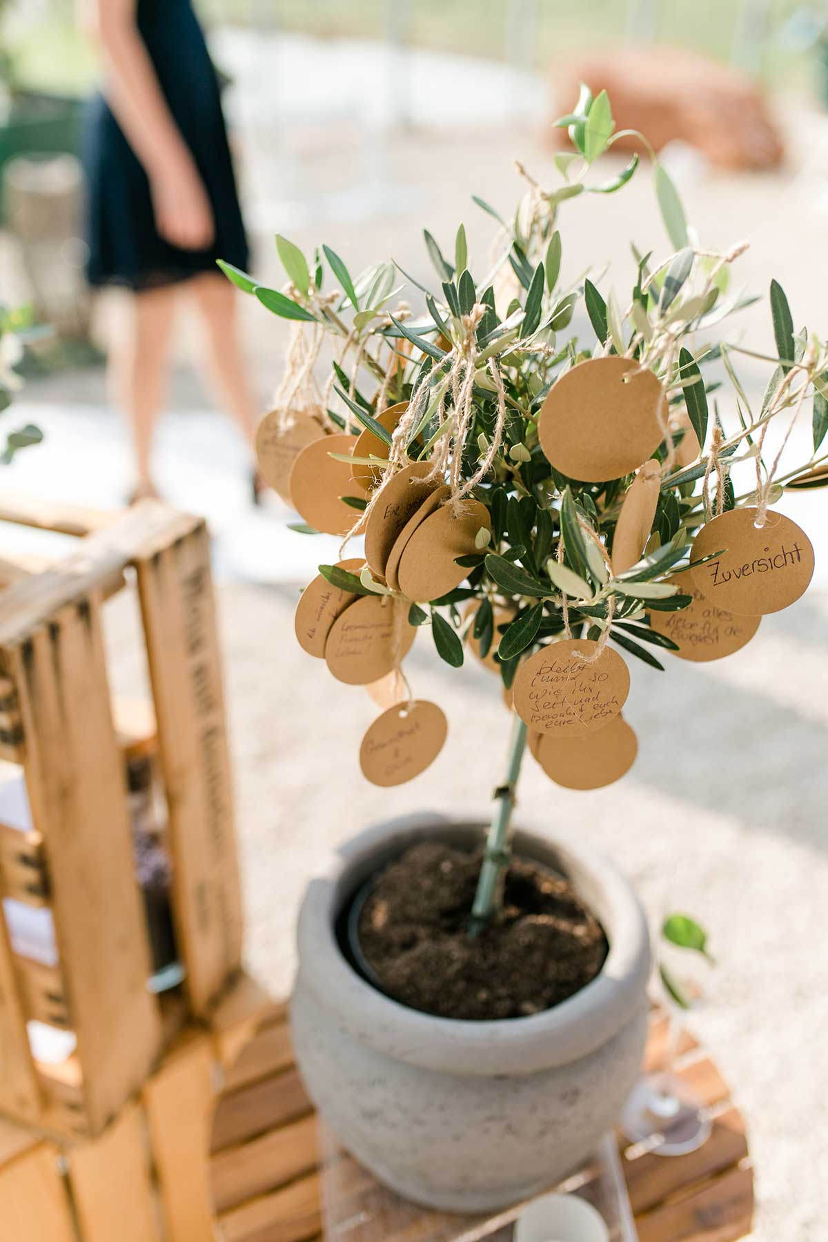 1632404492 64 5 ideas for rituals at the wedding ceremony at a - Planting a tree during the wedding: ritual for the wedding ceremony