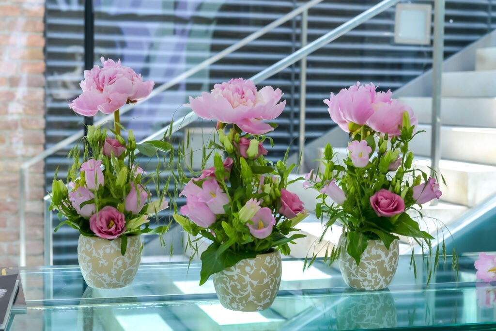 1632412381 37 Everything you need to know about peonies - Everything you need to know about peonies