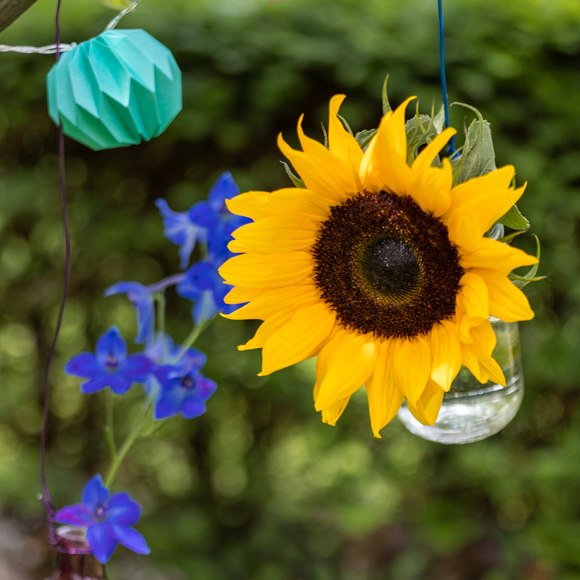 1632424546 670 Summer decoration with sunflowers Bloomy Blog - Summer decoration with sunflowers - Bloomy Blog